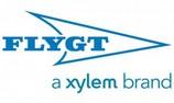 Xylem_7704-2